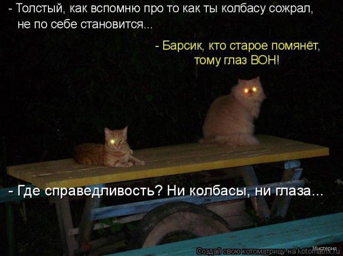 1269248323_1269006419_517767.jpg
